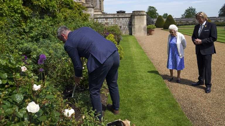Queen watches as Duke of Edinburgh rose is planted in a border in the gardens of Windsor Castle