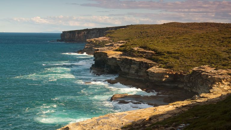 The naked sunbathers ended up getting lost in the Royal National Park south of Sydney