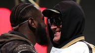 Deontay Wilder was handed a third match against Tyson Fury after a court ruled in his favour