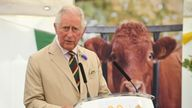 Prince Charles, left, stepped on the dung of a cow, right