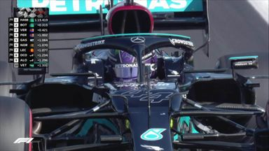 Hamilton on pole for Hungarian GP!