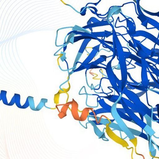 New protein database could 'revolutionise' way diseases - including COVID-19, dementia, and cancer -
