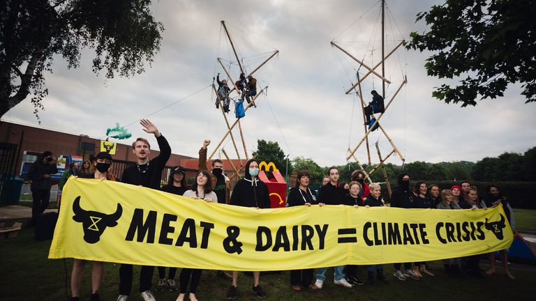 Animal Rebellion stages protest outside MacDonald's factory. Pic: Animal Rebellion/Tom Woollard