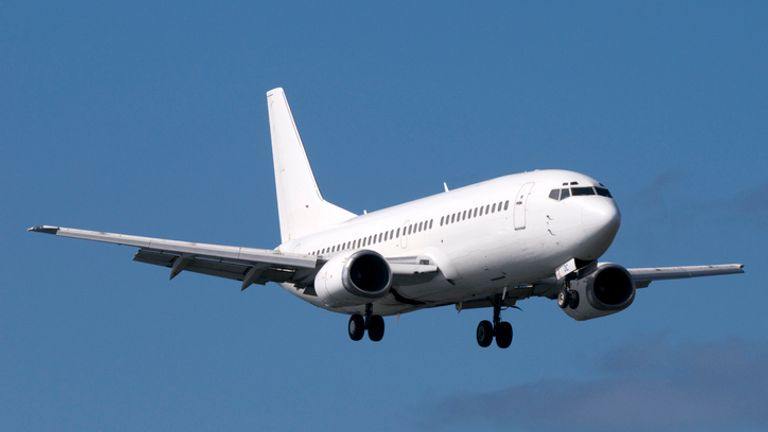 The plane involved was a Boeing 737 cargo aircraft. File pic