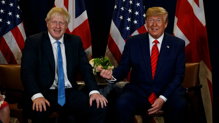 President Donald Trump meets with British Prime Minister Boris Johnson at the United Nations General Assembly, Tuesday, Sept. 24, 2019, in New York. (AP Photo/Evan Vucci) .