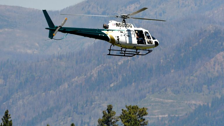 A helicopter surveys the area for the bear. Pic: AP