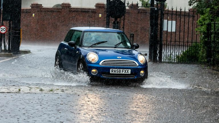 Richmond Park, London. Pic: Alex Lentati/LNP/Shutterstock