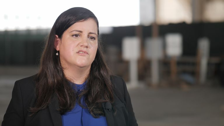 Susan Hensler, Defence lawyer