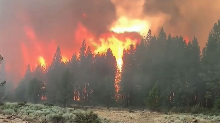 A wildfire in Oregon has spread over 75,000 acres
