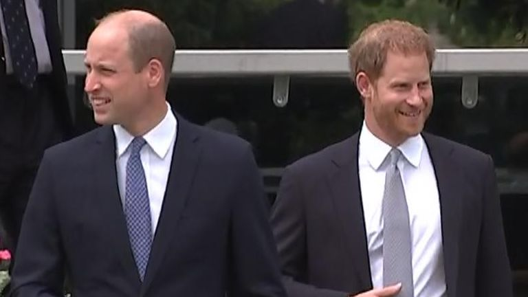 Prince William and Prince Harry at the unveiling of Princess Diana's statue at Kensington Palace