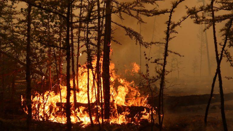 Fires burn near the Siberian village of Magaras in the Yakutia region of Russia