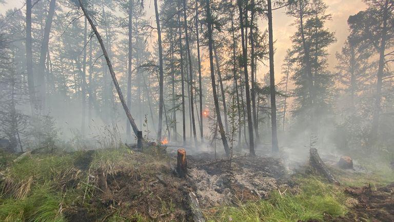 & # 39؛ آتش سوزی معکوس & # 39؛  برای کنترل شعله های آتش آماده شده اند