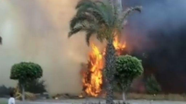 Forest fire burns in Manavgat, Turkey