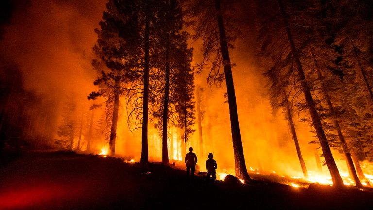The Dixie Fire has burned more than 200,000 acres. Pic: AP