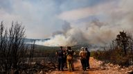 Turkey has been battling some 300 wildfires over the last 16 days (file pic)