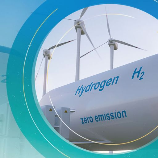 Government energy plans to make hydrogen from fossil fuel will result in missed climate targets, sa