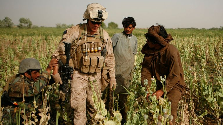 Coalition forces tried for many years to stop the opium trade but ultimately failed