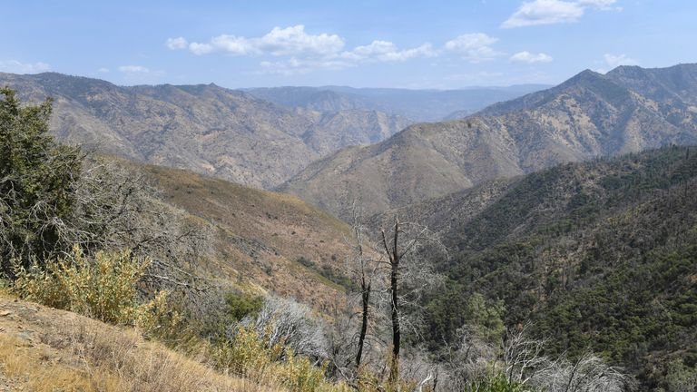 A remote canyon area northeast of Mariposa, where a family and their dog were found dead on Tuesday. Pic: Craig Kohlruss/The Fresno Bee via AP