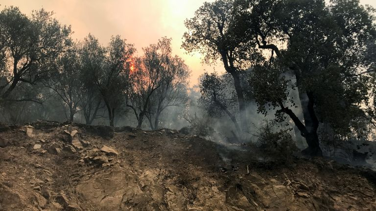 Smoke rises from a forest fire in the mountainous Tizi Ouzou province, east of the Algerian capital, Algiers, August 10, 2021. REUTERS/Abdelaziz Boumzar