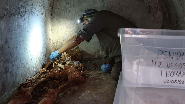 Archaeologists discovered the remains in a tomb in the east of Pompeii's urban centre