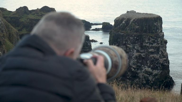 Tom McDonnell, a wildlife photographer, finds himself drawn back to the island.