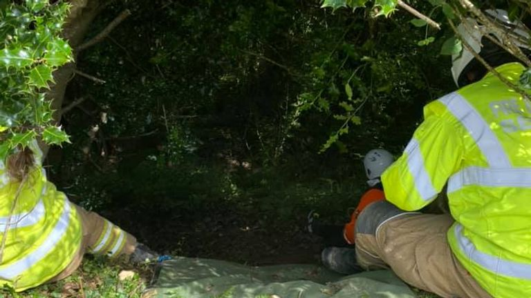 Woman, 83, rescued after falling 70ft down embankment after cat Piran meowed near where she fell