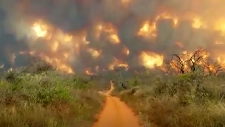 An area equivalent to twice the size of greater London has already burned in the Santa Cruz region