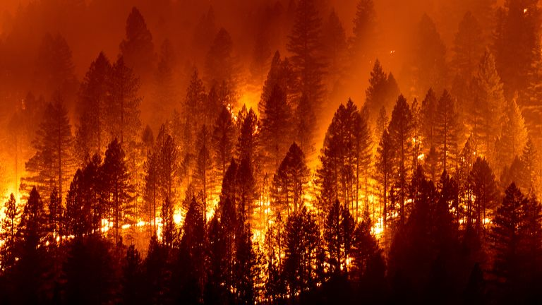 The Dixie fire has been burning in California. Pic: AP