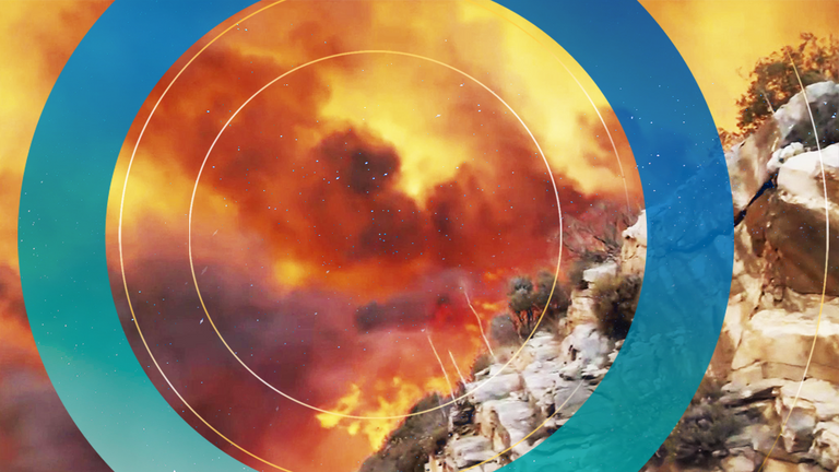 Wildfires have taken hold near Bodrum, southern Turkey