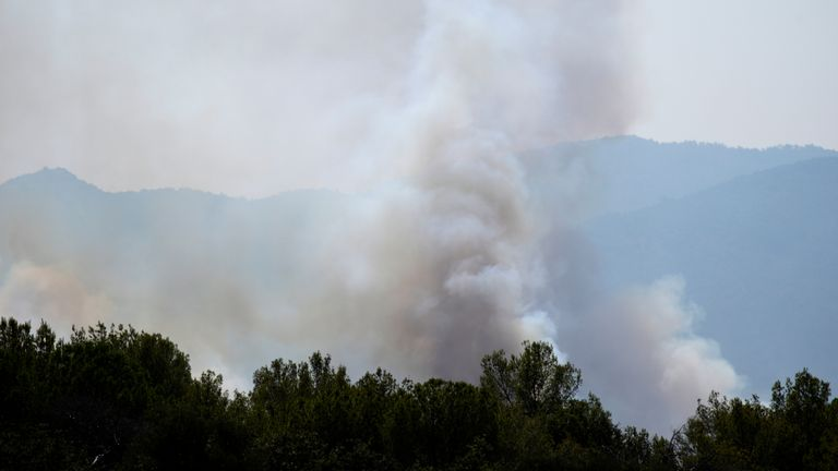 Smoke billows from the forest near La Garde-Freinet, southern France. Pic: AP