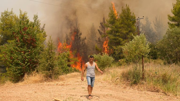 A wildfire burns a forest in Avgaria village on Evia island, about 184 kilometers (115 miles) north of Athens, Greece. Pic: AP