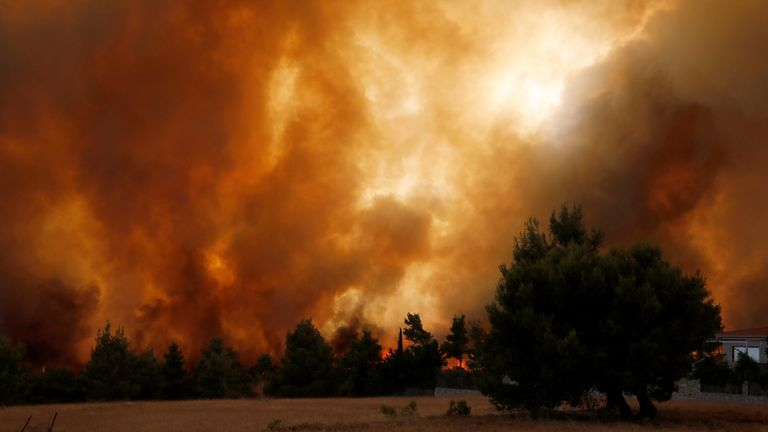 Smoke covers the sky as a wildfire burns a forest area north of Athens, Greece August 5, 2021. REUTERS/Costas Baltas