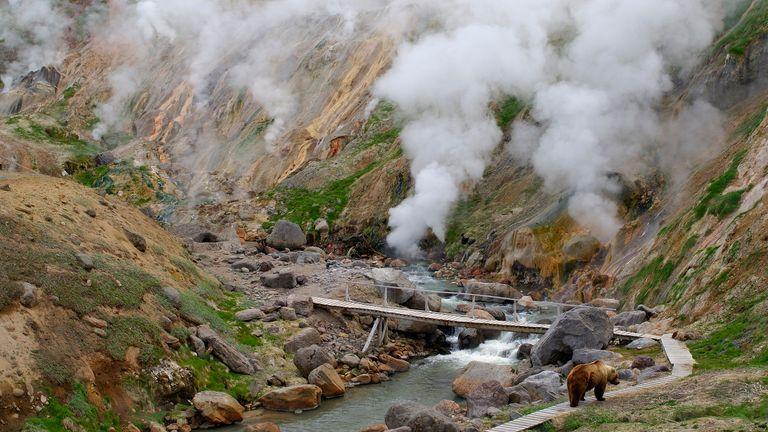 Un ours marche sur un sentier touristique près des geysers de la vallée des geysers dans la réserve naturelle de Kronotsky sur la péninsule du Kamtchatka dans cette photo d'archive du 20 mai 2006.  Les geysers d'une vallée éloignée de la Russie, qui sont considérés comme une merveille naturelle du monde mais que l'on craignait d'avoir détruits par un glissement de terrain au début de l'année, réapparaissent et fument à nouveau, a déclaré le groupe de conservation WWF le 26 septembre 2007. REUTERS/Igor Shpilenok/ Fichiers (RUSSIE)