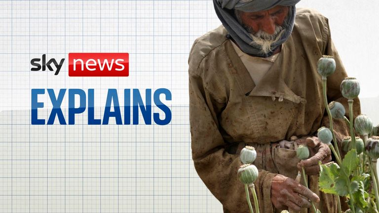 Sky News Explains: How did the Taliban fund their takeover?