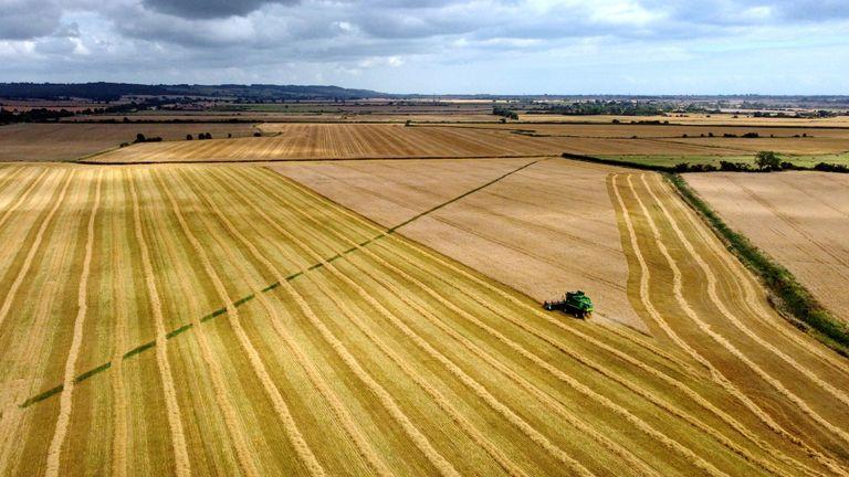 Fields near Ashford in Kent