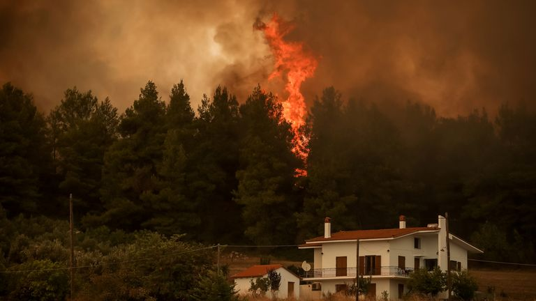 On the island of Evia, people were evacuated by cruise ships after other routes were closed of by flames