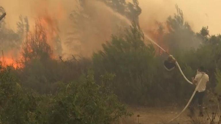 Wildfires, Israel