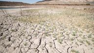"""UNITED STATES - AUGUST 23: A portion of Boulder Harbor that was once submergeed is now dry cracked earth due to low water levels at Lake Mead in Boulder City, Nev., on Monday, August 23, 2021. The Bureau of Reclamation declared a shortage on the Colorado River last week as the nation""""s largest resevoir fell to 35% of capacity PIC:AP"""