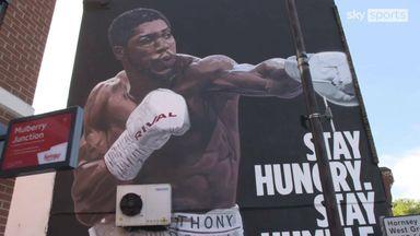 AJ mural painted in shadow of Spurs stadium