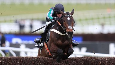 What next for Altior?