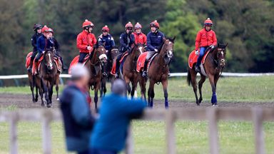 National Racehorse Week unifying the sport