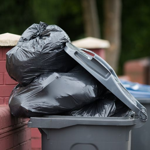 Bins left uncollected after HGV driver shortage hits councils