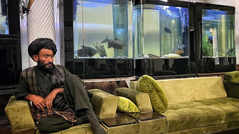 Fishtanks in the entrance lobby