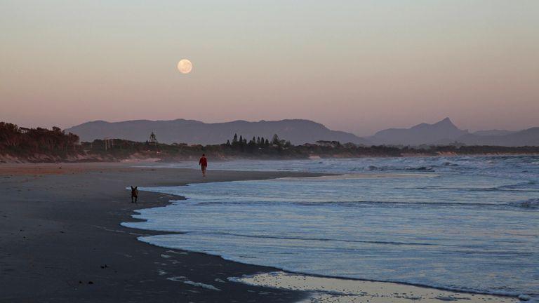 Man walking his dog along Belongil Beach at sunrise, Byron Bay, NSW, Australia. Pic: Mike Greenslade/VWPics via AP Images