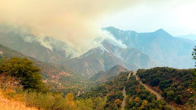Smoke plumes rise from the Paradise Fire in Sequoia National Park. Pic: AP