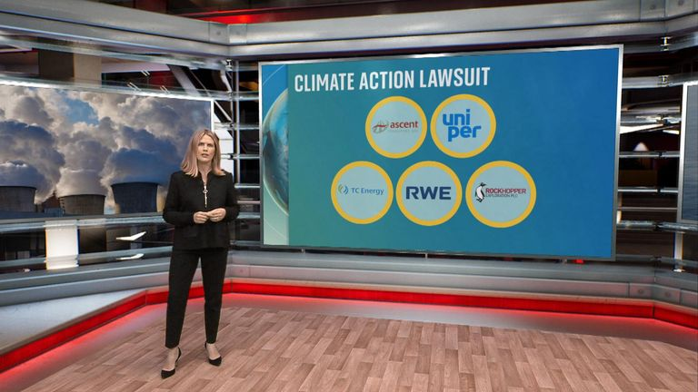 Sky's climate change correspondent Hannah Thomas-Peter looks at which companies are filing lawsuits against governments.
