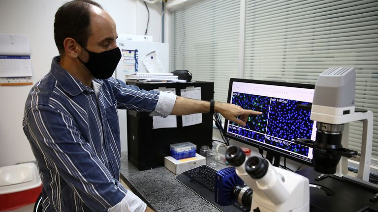 researcher works on a sample inside a laboratory at the University of Sao Paulo's Institute of Physics for a study in which the institute claims to have discovered a 75% drop in the coronavirus disease (COVID-19) production after cells came into contact with jararacussu snake venom, in Sao Carlos, Brazil August 30, 2021. Picture taken August 30, 2021. REUTERS/Carla Carniel