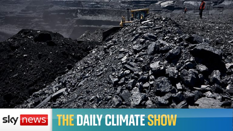 Today's show looks at how more than three-quarters of planned coal power plants have been scrapped since the Paris agreement.
