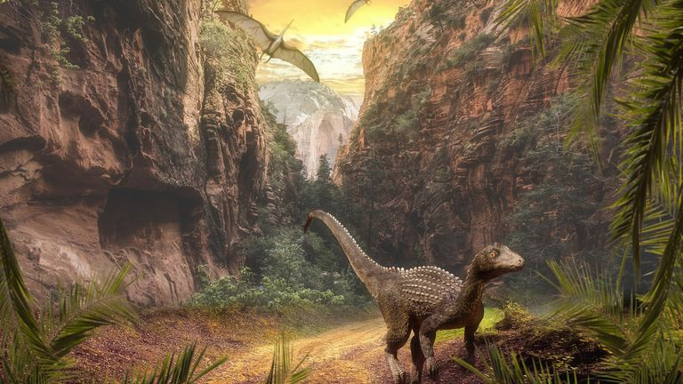 Ecological changes following intense volcanic activity during the Carnian Pluvial Episode 230 million years ago paved the way for dinosaurs to become the dominant species.