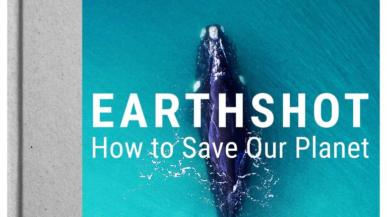 Earthshot - how to save our planet cover